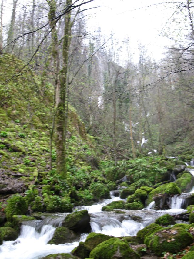 water fall of Jankovac