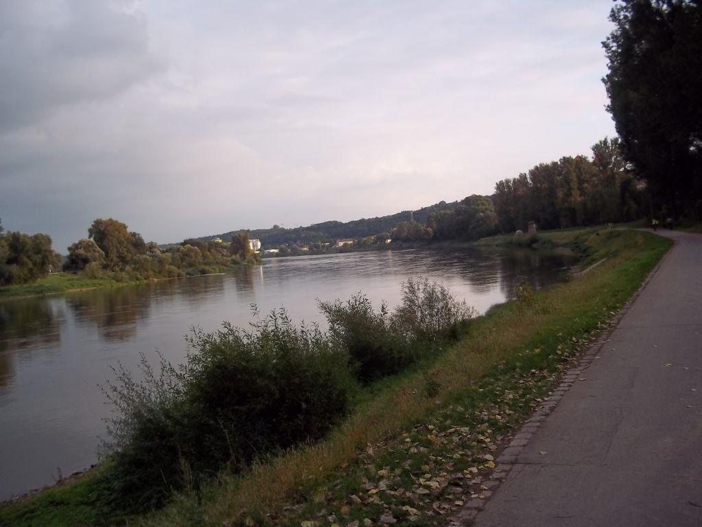 bicycle path along Elbe river after Bad Schandau cycling tour partner wanted